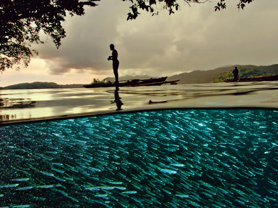 A fisherman casting his line on a coral inlet in Indonesia.