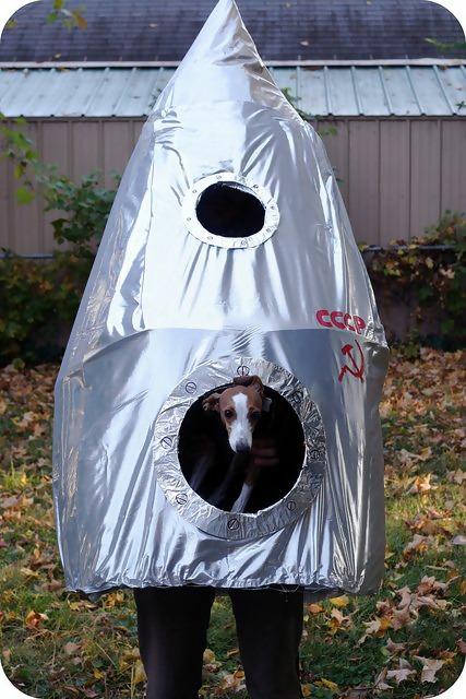 Image result for sputnik 2 costume