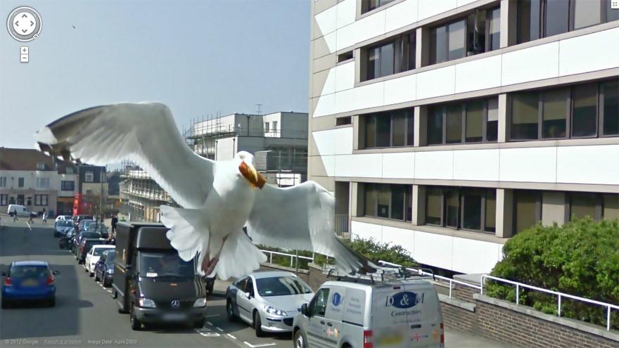 Macintosh HD:Users:brittanyloeffler:Downloads:Upwork:GoogleMaps:funny-google-street-view-photos-37.jpg
